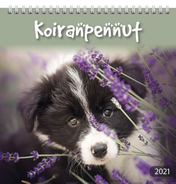 Koiranpennut 2021